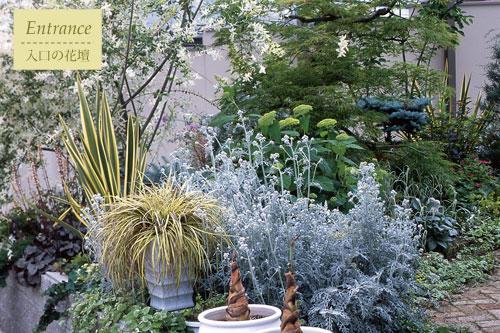 ハクロニシキが主役の玄関横の花壇