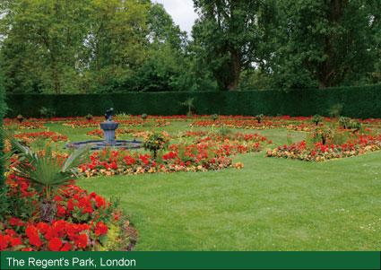 夏のリージェントパーク、ロンドン
