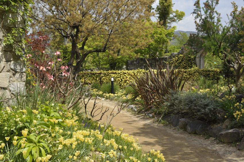 バタリーニの咲くシーズンズの庭