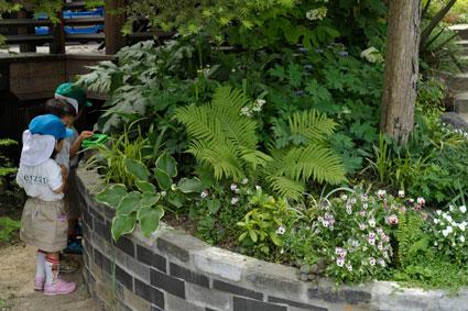 泉山幼稚園のお庭 - 坂の花壇の左側