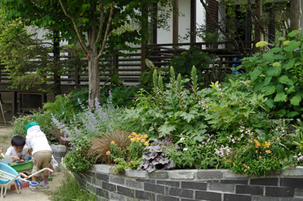 泉山幼稚園のお庭-坂の花壇の右側